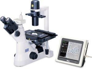 Микроскоп инвертированный Nikon Eclipse TS100 (F,L)